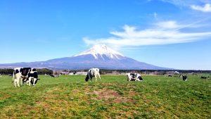 アニマルライツセンターが牛乳を偏見による情報操作し酪農業関係者が立ち上がる!